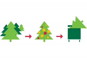 Recyclez votre sapin © Galyna